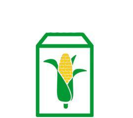 Селекция кукурузы