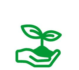 Производство семян