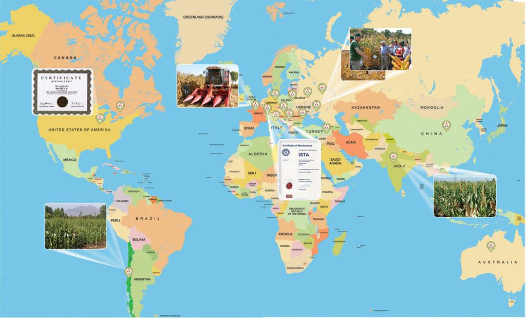 Карта присутствия Компании МАИС
