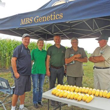 Гибриды кукурузы Компании МАИС на полях Украины, Европы и Америки
