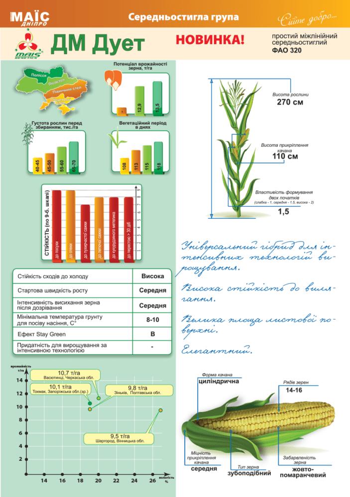 Семена кукурузы ДМ Дует (ФАО 320)