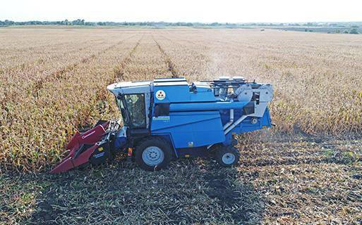 Уборка кукурузы селекционным комбайном Компании Маис