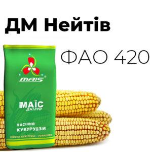 Среднепоздний гибрид кукурузы ДМ Нейтив (ФАО 420)
