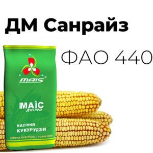 Среднепоздний гибрид кукурузы ДМ Санрайз (ФАО 440)