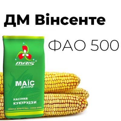 Среднепоздний гибрид кукурузы ДМ Винсэнтэ (ФАО 500)