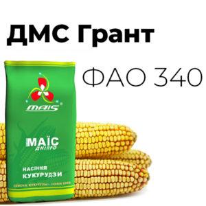 Среднеспелый гибрид кукурузы ДМС Грант (ФАО 340)