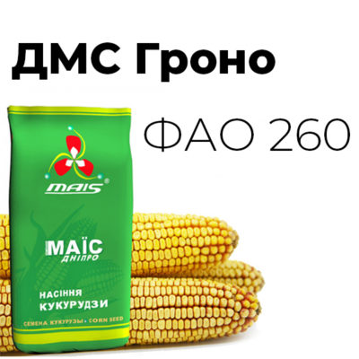 Среднеранний гибрид кукурузы ДМС Гроно (ФАО 260)
