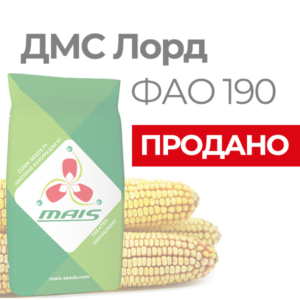 Раннеспелый гибрид кукурузы ДМС Лорд (ФАО 190)