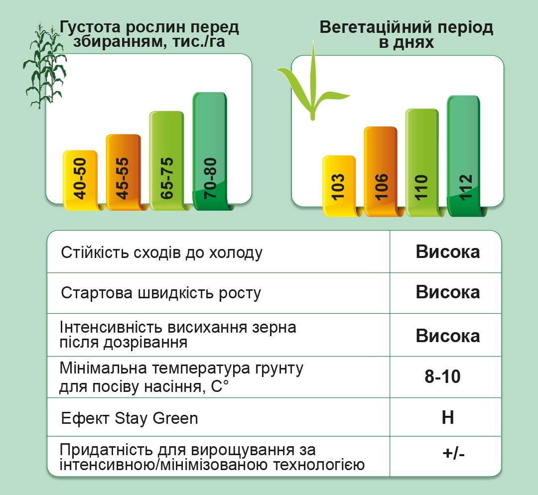 ДМС Прайм (ФАО 250) Середньоранній гібрид кукурудзи