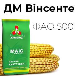 Среднепоздний гибрид кукурузы ДМ Винсенте (ФАО 500)