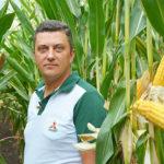 Погодні чинники чи помилки агронома? Основні причини неврожаю кукурудзи 2020